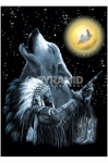 Native American (Wolf MoonHeartrock) Poster