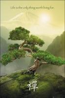 Poster Aforismi Massime Zen Filosofia Orientale