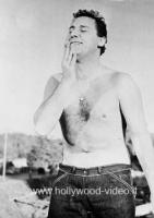 "A. Sordi ""Americà facce Tarzan!"" Foto DIG. B/N 20x25 Hollywood"