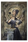 Alchemy (Black Rose) Maxi Poster