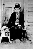 C.Chaplin cane vagabondo foto poster