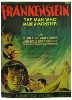 Frankenstein con Boris Karloff Poster 70x100