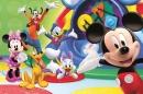 Poster Cartoni Disney Topolino Paperino Pluto Pippo Paperon De P