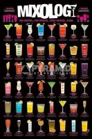 Poster Divertenti Ricette dei Cocktail Birra Pub