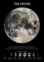 Poster Educativi e Scolastici Le Fasi Lunari