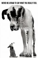 Poster Fotografico Cucciolo Cane Alano Arlecchino stile Dalmada