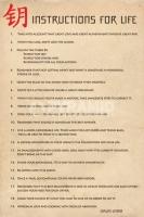 Poster Lifestyle Massime Dalai Lama Istruzioni per Vivere