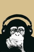 Poster Musica Monkey Steez Pop Art