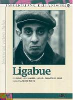 Serie TV Ligabue (1978 ) 3DVD Salvatore Nocita