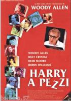 poster film Harry a pezzi W.Allen CINEMA 100X140